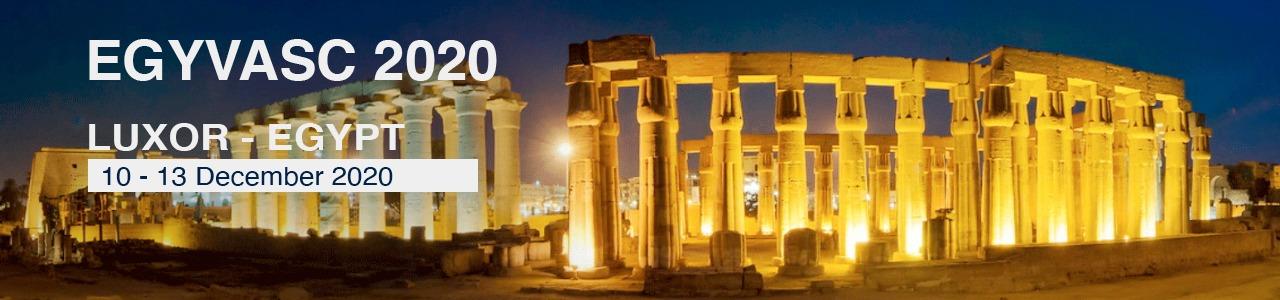 Egyptian Vascular Forum