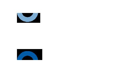 OPTIV_logo