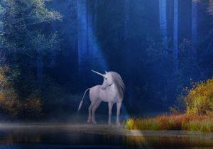 Unicorn 300 x210
