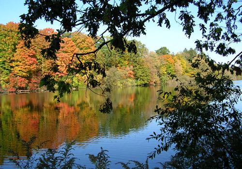 Springbank Park