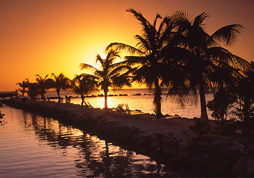 Aruba at Sunset