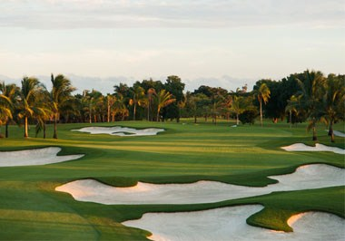 Miami & Doral Golf Courses