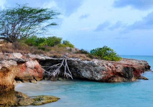 Cabo Rojo Landscape