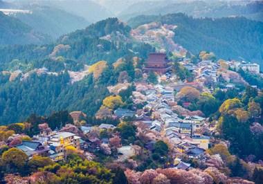 Nara-Skyline