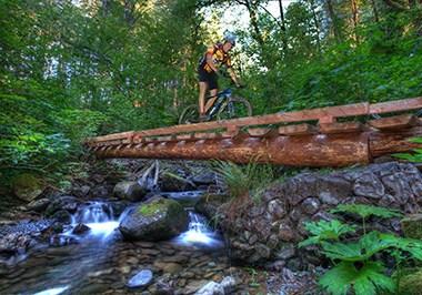 Mountain Biker Over Bridge