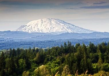 Mt.St.Helens Vista