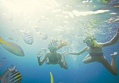 Curaçao - Snorkel