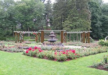 Rose Garden at Central Park
