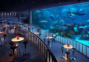 S.E.A. Aquarium™ - World's largest oceanarium