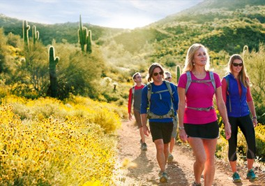 Hiking in Scottsdale's McDowell Sonoran Preserve