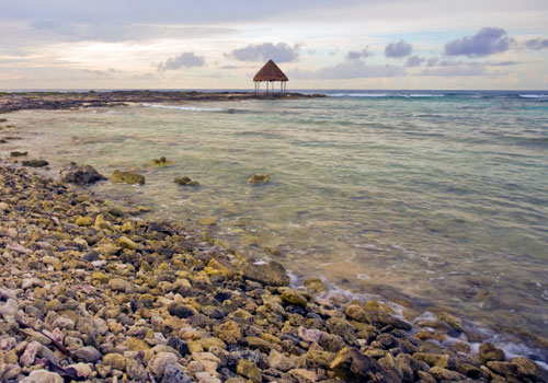 Caribbean Seascape Riviera Maya Coast