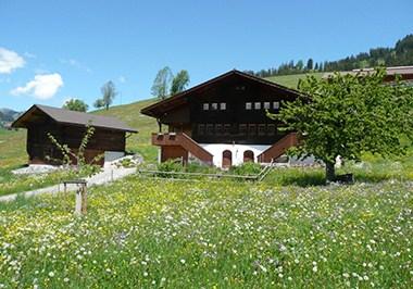 Gstaad Landschaft