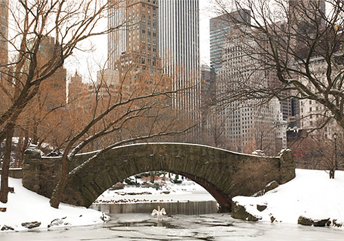 Gapstow Bridge in Central Park