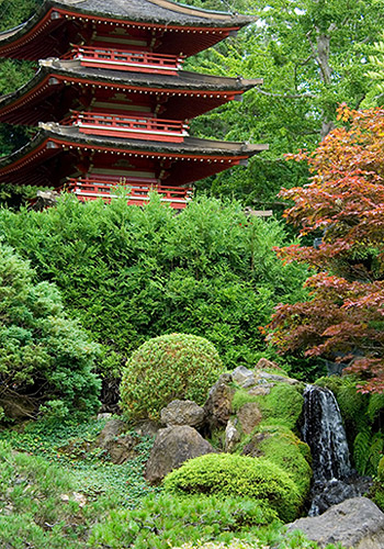 Japanese Tea Garden at Golden Gate Park