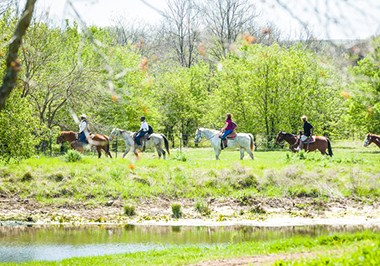Dallas River Ranch at Texas Horse Park