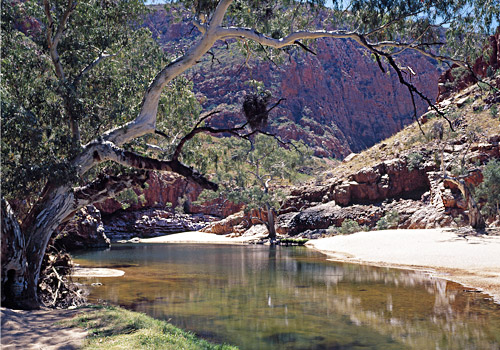 Waterhole, West MacDonnell Ranges