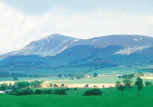 Tinto Hill