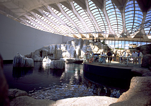 St Lawrence Marine Ecosystem Montreal Biodome
