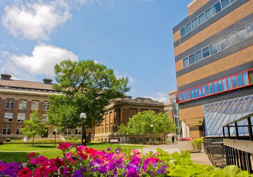 University Minnesota