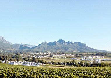 Stellenbosch Cityscape