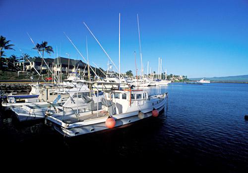 Ma'alaea Harbor, Maui