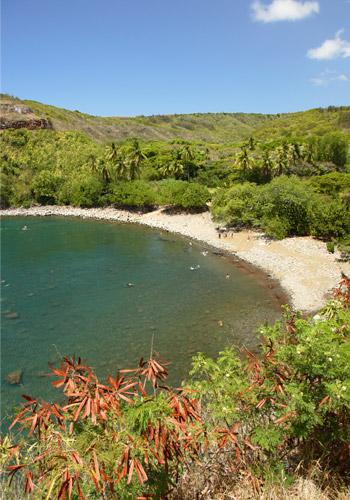 Honulua Bay, Maui