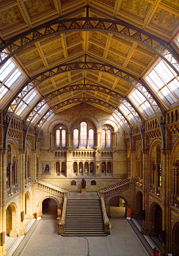 Central Hall at Natural History Museum