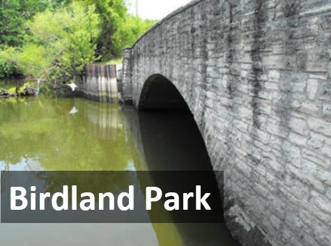 Explore DSM - Birdland Park