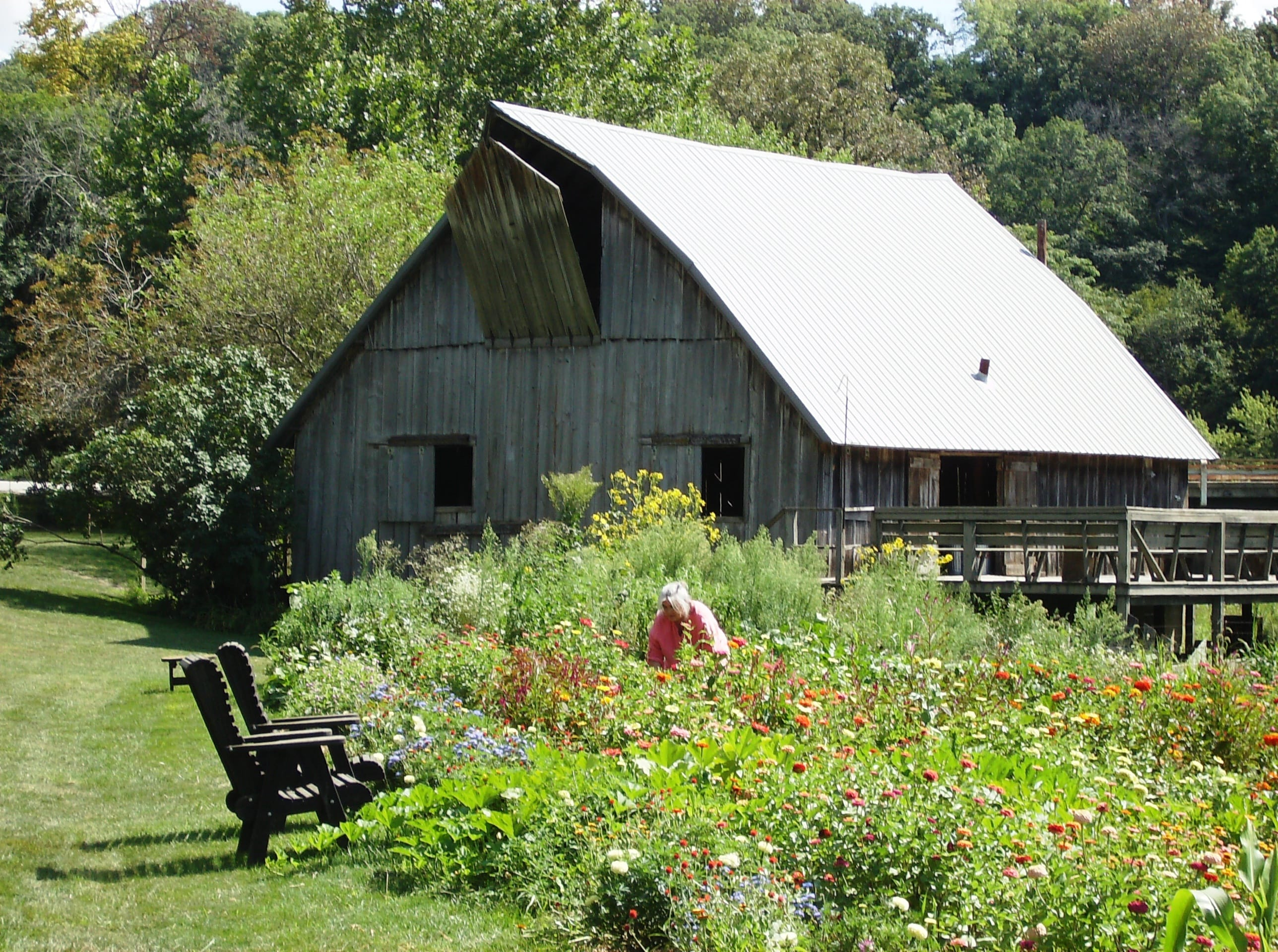 Tour - Country Farm Harvest Diner at White Rock