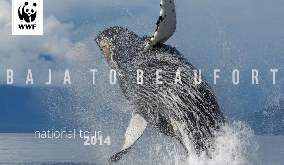 BajaToBeaufort (2)
