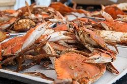 Crab Feast_reduced