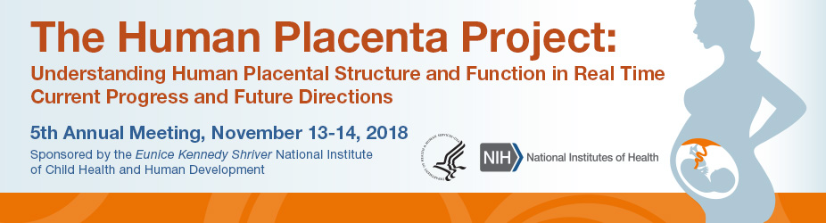 The Human Placenta Project: Understanding Human Placental Structure and Function in Real Time