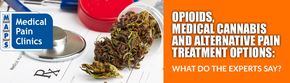 OPIOIDS, MEDICAL CANNABIS AND ALTERNATIVE PAIN TREATMENT OPTIONS: What Do the Experts Say?