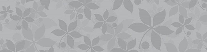 Buckeye Leaf Image Web 790x201