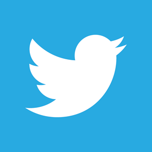 twitter official logo