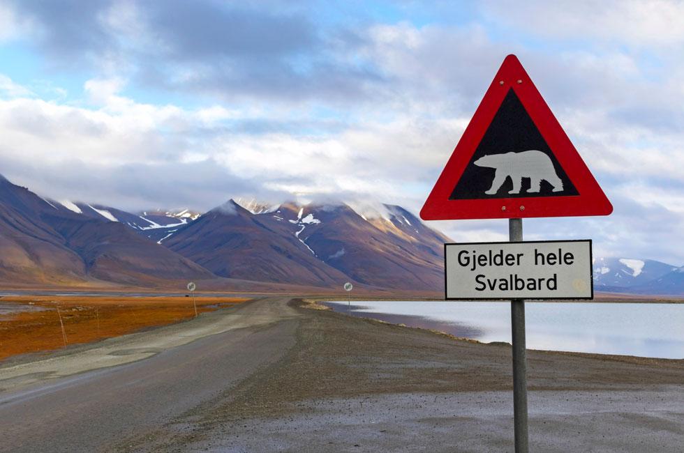 Arctic marathon Svalbard