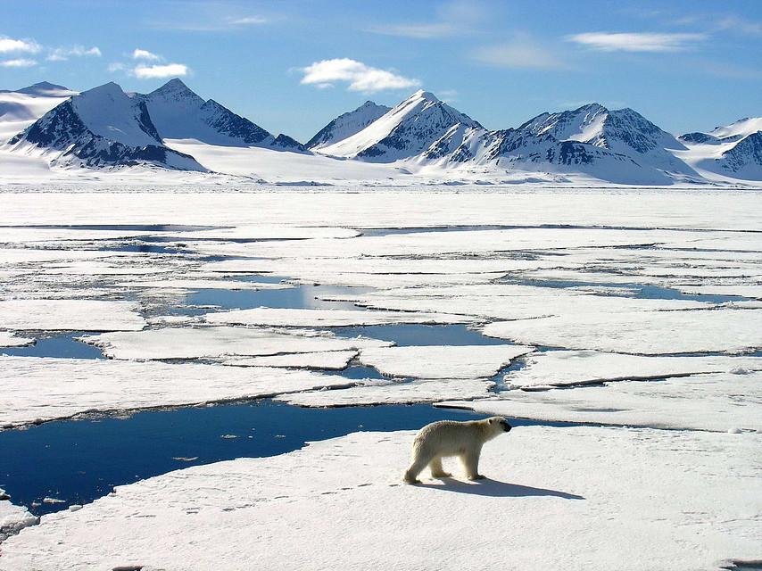 Arctic marathon spitsbergen