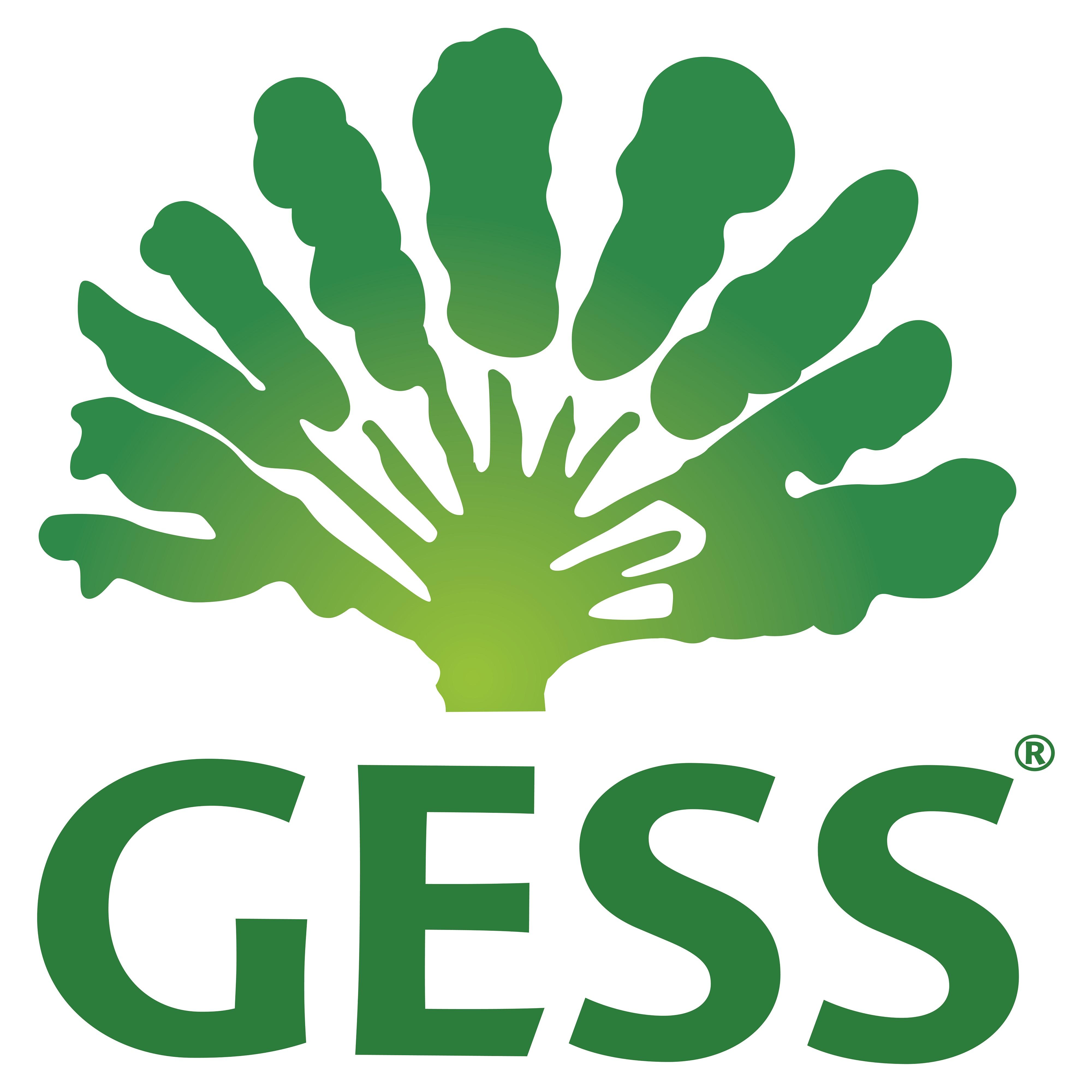 Co-Sponsor_GESS_03