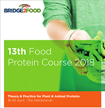13th Food Proteins Course Brochure download