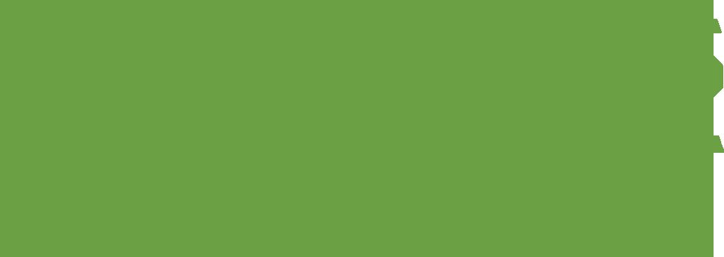 CapTimes IdeaFest logo-green