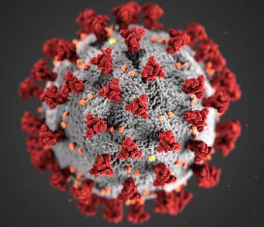 CoronavirusNL