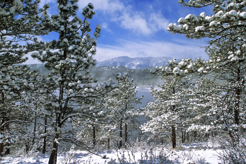 Winter Activity December 2017