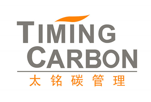 Timing carbon logo