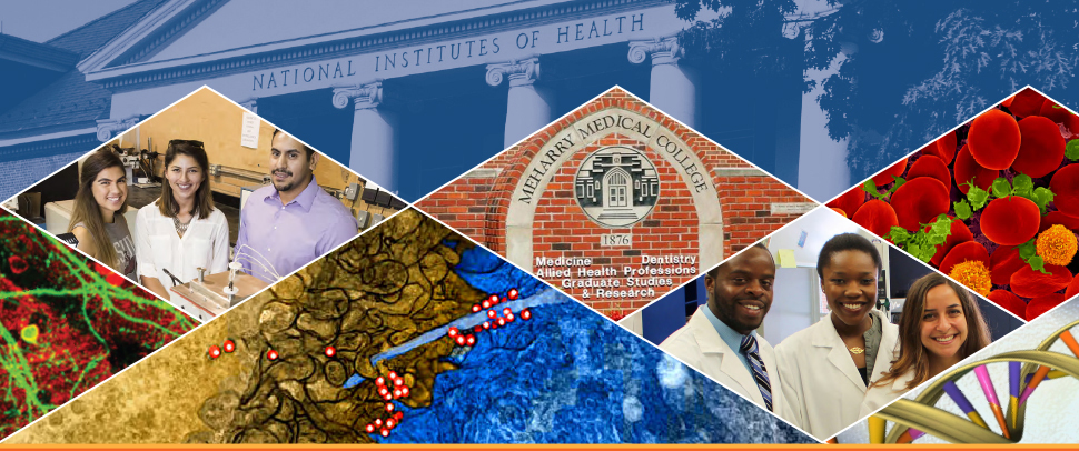 NIAID RESEARCH FUNDING WORKSHOP AT MEHARRY MEDICAL COLLEGE