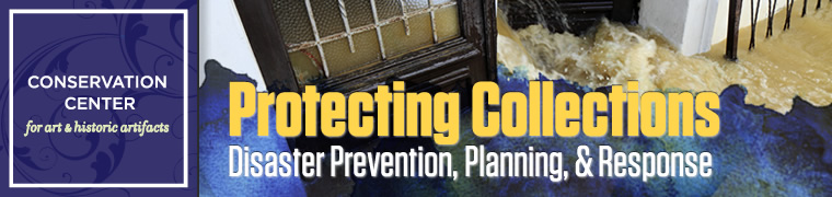 Protecting Collections: Disaster Prevention, Planning, and Response