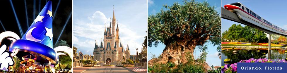Disney Banner2