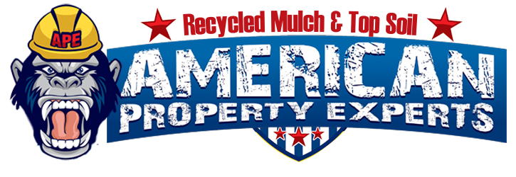 american property experts 2017