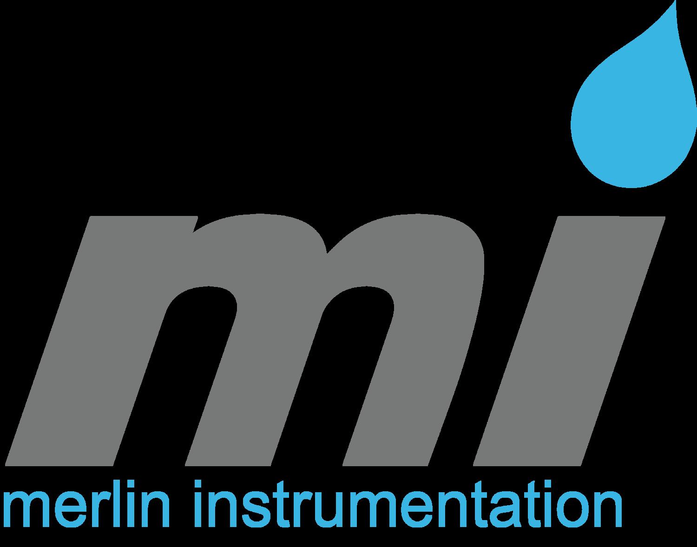 Merlin Logo 2018