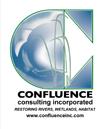 Confluence-logo (1)