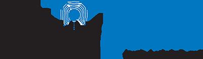 Logic Systems Logo